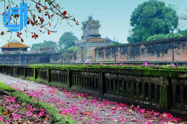 Tour du lịch Đà Nẵng Huế Tết Nguyên Đán 4 ngày 3 đêm giá rẻ 2018