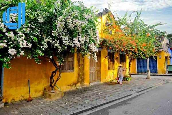 Tour du lịch Đà Nẵng Tết Dương Lịch 3 ngày 2 đêm giá rẻ trọn gói